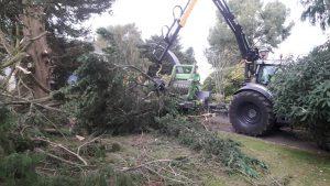 Big kit tree surgery